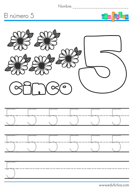 el número 5